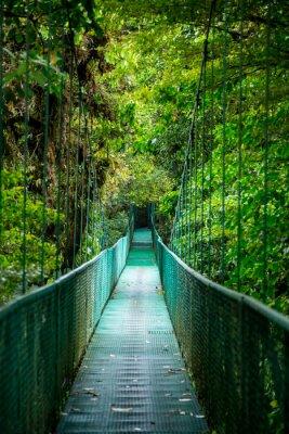 Adesivo Eine Brücke im Regenwald