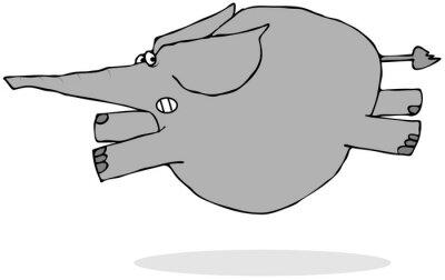 Adesivo Elefante correndo assustado