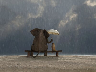 Adesivo elefante e cão sentar-se sob a chuva