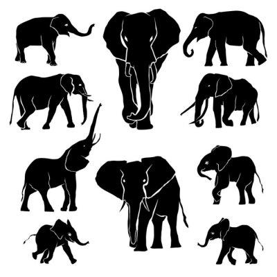 Adesivo Elephant Silhouette Pacote
