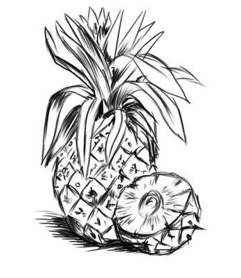 Adesivo esboçar para pineaple