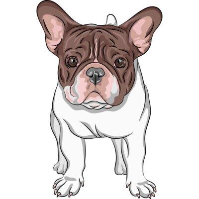 Adesivo Esboço cão doméstico raça Bulldog Francês