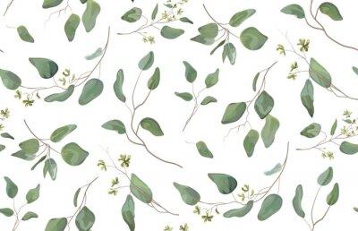 Adesivo Eucalipto árvore diferente, folhagem galhos naturais com folhas verdes sementes padrão tropical sem costura, estilo aquarela. Vector decorativo bonito ilustração elegante bonito isolado fundo branco