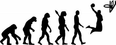 Adesivo Evolução do basquetebol