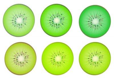 Adesivo Fatias da fruta Kiwi em várias cor de sombra verde