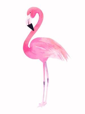 Adesivo Flamingo cor-de-rosa da aguarela. Vector a ilustração