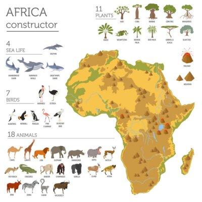 Adesivo Flat África flora e fauna mapa construtor elementos. Animais, b
