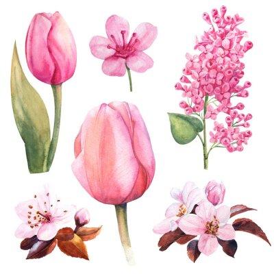 Adesivo flor aquarela de primavera com tulipa e lilás