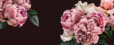 Adesivo Floral banner, flower cover or header with vintage bouquets. Pink peonies, white roses isolated on black background.