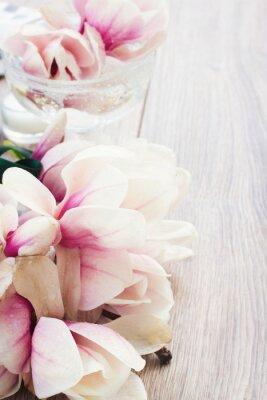 Adesivo flores de magnólia