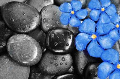 Adesivo Flores e pedras