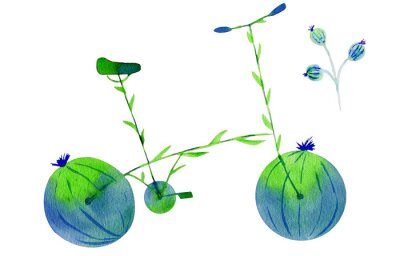 Adesivo Flower bike. Hand drawn watercolor illustration on paper. Green and blue bicycle flower with calyx round fruit buds briar and leaves. Isolated on white background
