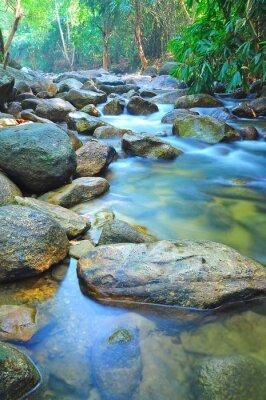 Adesivo Fluxo de água através das rochas em um córrego raso na Malásia selva