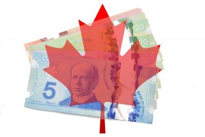 Adesivo Folha de bordo canadense com dólares no fundo branco