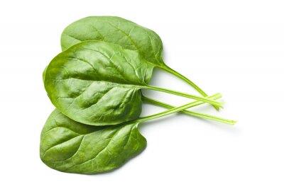Adesivo folhas de espinafre verdes