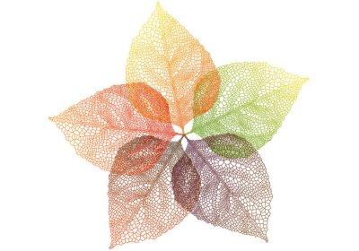 Adesivo folhas de outono coloridas, vetor