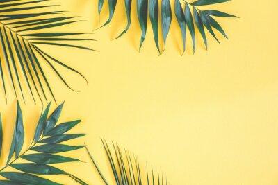 Adesivo Folhas de palmeira tropical no fundo amarelo. Conceito de verão. Flat lay, vista de cima, copie o espaço