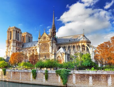 Adesivo França.
