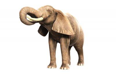 Adesivo Freigestellter Elefant mit erhobenem Rüssel (gerandertes Bild)