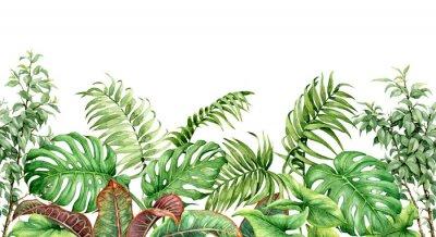 Adesivo Fronteira sem emenda de plantas tropicais