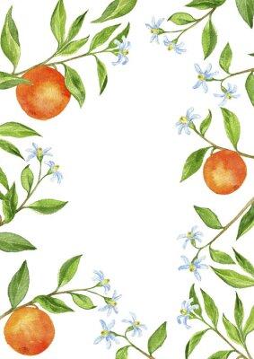 Adesivo Fundo com galhos de árvore de fruta, flores, folhas e laranjas