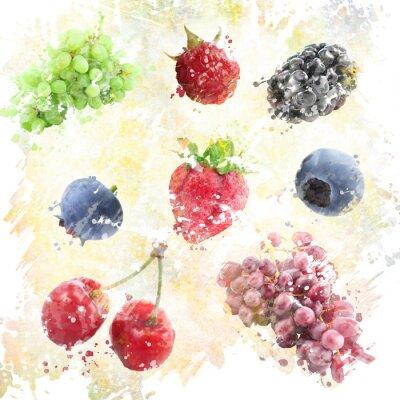 Adesivo Fundo das frutas da aguarela