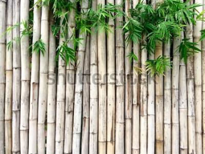 Adesivo Fundo de bambu natural