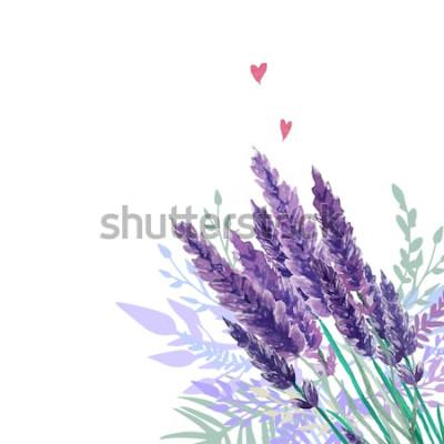Adesivo Fundo de buquê de lavanda em aquarela. Quadro com plantas pintadas à mão do vintage, decoração floral e corações. Ilustração vetorial