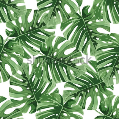 Adesivo Fundo de verão. As folhas de palmeira tropicais, selva saem do teste padrão floral do vetor sem emenda.