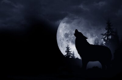 Adesivo Fundo do lobo do urro