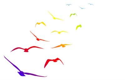 Adesivo Gabbiani, volare, volo, arcobaleno, ritmo