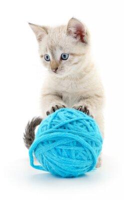 Adesivo Gato, bola, fio