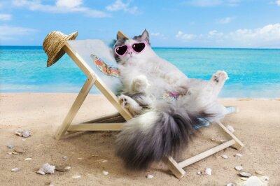 Adesivo gato descansando em uma espreguiçadeira