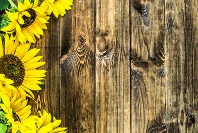Adesivo Girassóis no fundo de madeira rústico. Flores fundos com cópia-espaço