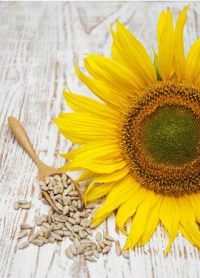 Adesivo Girassol com sementes