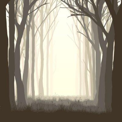 Adesivo Glade ilustração quadrada na floresta.