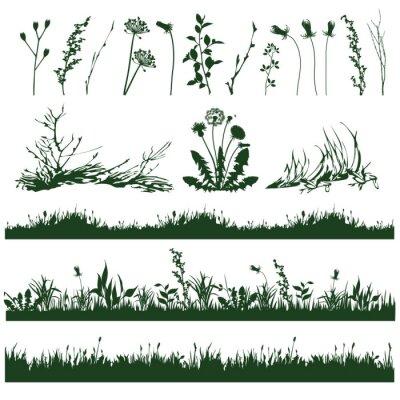 Adesivo grama