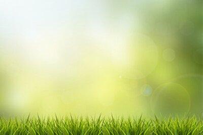 Adesivo Grama e natureza fundo verde borrado