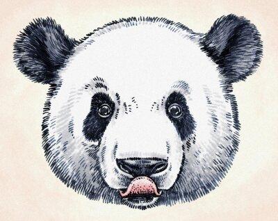Adesivo Gravar tinta desenhar panda ilustração