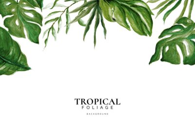 Adesivo Hand Drawn Watercolor Tropical Leaves, Tropical Exotic Leaves, Background, Urban Jungle, House Plant