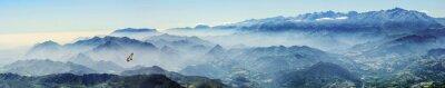 Adesivo Hochgebirge mit Gänsegeier im Nebel (Picos de Europa, Asturien, Spanien)