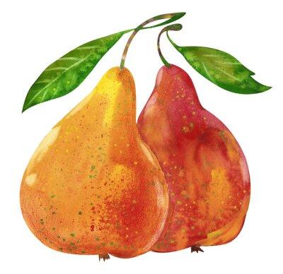 Adesivo Ilustração da aguarela peras saborosos mão tirada