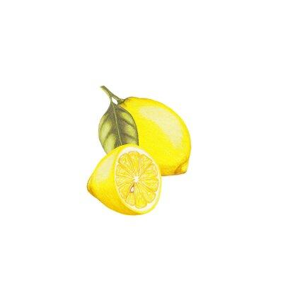 Adesivo Ilustração de limão