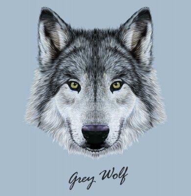 Adesivo Ilustração de vetor digital Retrato de um lobo.
