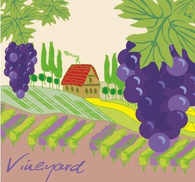 Adesivo Ilustração do vetor da vinha