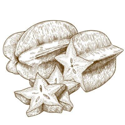 Adesivo Ilustração gravura antiga de carambola