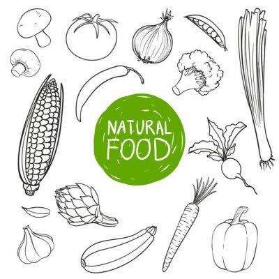 Adesivo Ilustração Vetor Stock Hand Drawn Vegetables