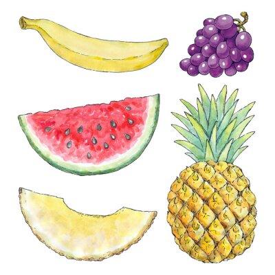 Adesivo Imagem da aguarela de frutas diferentes