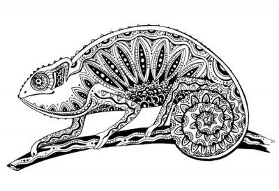 Adesivo imagem de preto e branco lagarto camaleão em tattoostyle