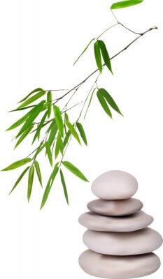 Adesivo isolated grey stones and green bamboo illustration
